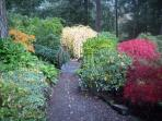 Garden Path in Autumn