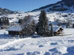 Les Silenes: New luxury 6 bed chalet apt. Gstaad