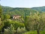Villa Caccianello, private pool in Tuscany Italy