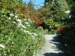 A late summer view of the cottage garden path