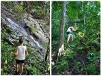 Experience lush, primary jungle in an adventurous hike down to Playa La Macha, just below the home