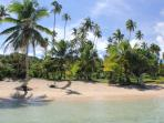 SigaSiga Sands COCO Cottage - White Sand Beach!