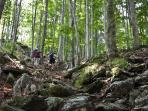 walking in the Apuan Alps Park