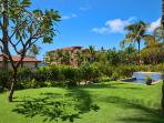 Large Private Grass Lawn and Garden with Partial Ocean Views and Plunge Pool, Grotto Shower, Large Covered Patio