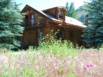 Beautiful Log Home in Hailey to rent Summer/Winter