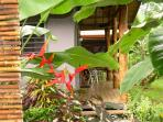Casita Porch with Red Heliconia