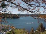 Summerhill Cottage - Private Access to the Lake