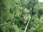 Zip Line in Jaco