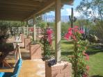 Tucson Central Villa w/ Garden, Guest House & Pool