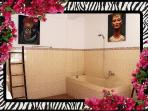 Spacious Ensuite bathroom to Master bedroom, tub with shower [hot/cold water]26/04/2014