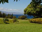 Kapalua Ridge Villas  R2512