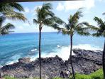 2BR Oceanfront Poipu Condo, Kitchen, WiFi, 402A