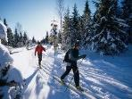 Local Cross Country Ski areas
