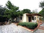 Renovated apartment for 5 persons, with swimming pool , in Palinuro
