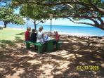 Picnicing in the Park at the Beach in front of Condo