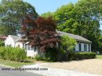 #1215 Large back Yard & Within Walking Distance To Town
