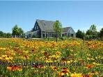 #7766 pristine and professionally decorated Edgartown rental