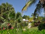 CoCoCondo - Your Caribbean Home away from Home