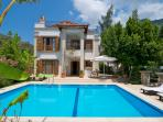Luxury 3 bed villa with own pool and sea views