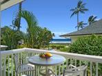 Oceanfront Poipu Kapili 20 Swaying Palms, Rolling Waves, Heated Pool, Updated