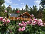 RIVER Amazing Log Home, Retreats & Family Reunions
