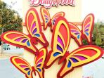 Dollywood Opens March 22 & Splash Country opens May 24  My guest can get Discount Tickets to Both