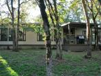 The Ranch House on 5 acres.. close to Jacksonville