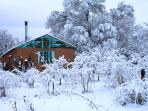 Mountain Eco Cabin: Vista Hermosa, located in between Red River and Taos Ski Valleys
