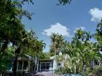 12P*Reunions*Large&Charming Property/Coconut Grove