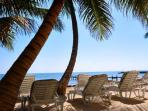 Quiet Secluded Beach Front 1 BR 1 BA Condo FIRST FLOOR ON THE BEACH