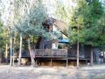 Yosemite - Pine Mountain Lake - Groveland - Cabin