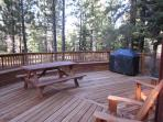 Back Deck with 50 inch gas grill