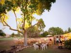 Our large backyard is great for parties or special events.