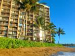 Valley Isle Resort Oceanfront 1 Bdrm #605