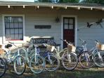 Our Fleet of Country Cruiser Bikes
