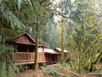 The Alderwood Cabin