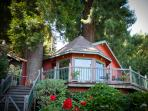 Redwood Tree House on the River