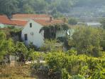 Holiday house Petar in Orasac near Dubrovnik