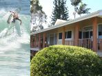 Merrie Monarch, Beach, Whales, Surf, 2 Mi to Hilo