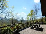 Spring view from big wrap-around deck.