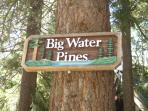 Big Water Pines located in Tahoe Pines