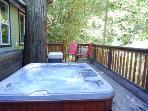 Above and Beyond, Hot Tub, Two Blocks from River