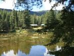'Bella Pines' Mountain fishing and vacation Cabin