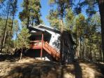Cabin In The Pines - 3+ Acres near Skiing & Hiking