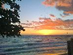 TROPICAL PARADISE- 2bed condo steps to beach!