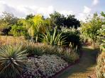 lots of paths lead your through the garden