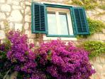 Guest House Bougainvillae