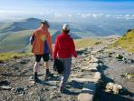 Unlimited forest, river, lake and mountain walks to suit all abilities