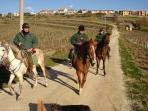 we can organize horse riding with guide