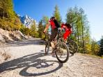 Summer mountain biking - down hill and valley tracks